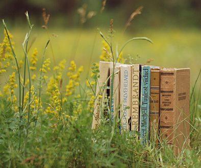 book-2692801_960_720